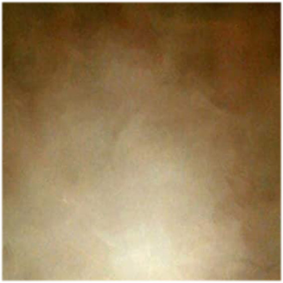 Brown Abstract Old Master Backdrop